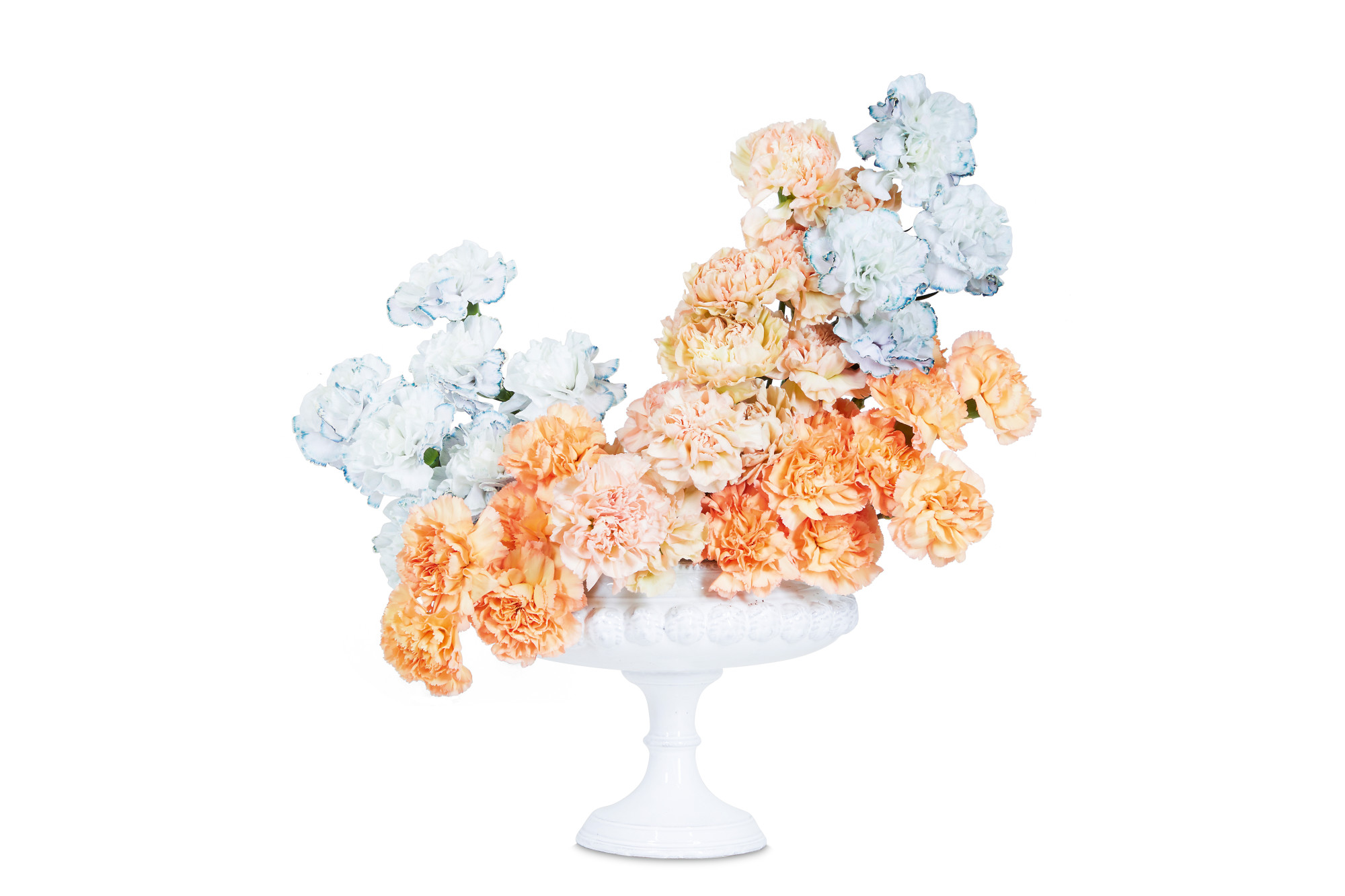 A complementary Peach and pale blue Carnation arrangement from Flower Color Theory. 'When creating a composition with only one type of flower, focus on color variation and the desired shape of the arrangement,' Darroch and Michael Putnam advise.