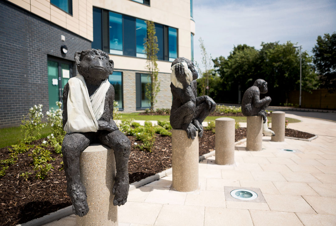 Patient Patients, 2014, Southmead Hospital, Bristol, UK, by Laura Ford