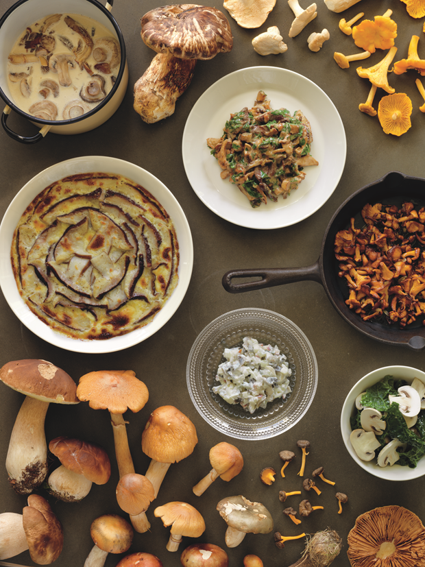 Clockwise from top left: Mushroom Soup; Creamed Mushrooms; Fried Mushrooms; Mushroom Salad; Finnish Salted Mushroom Salad; Mushroom Gratin. Photograph by Erik Olsson. From The Nordic Cookbook