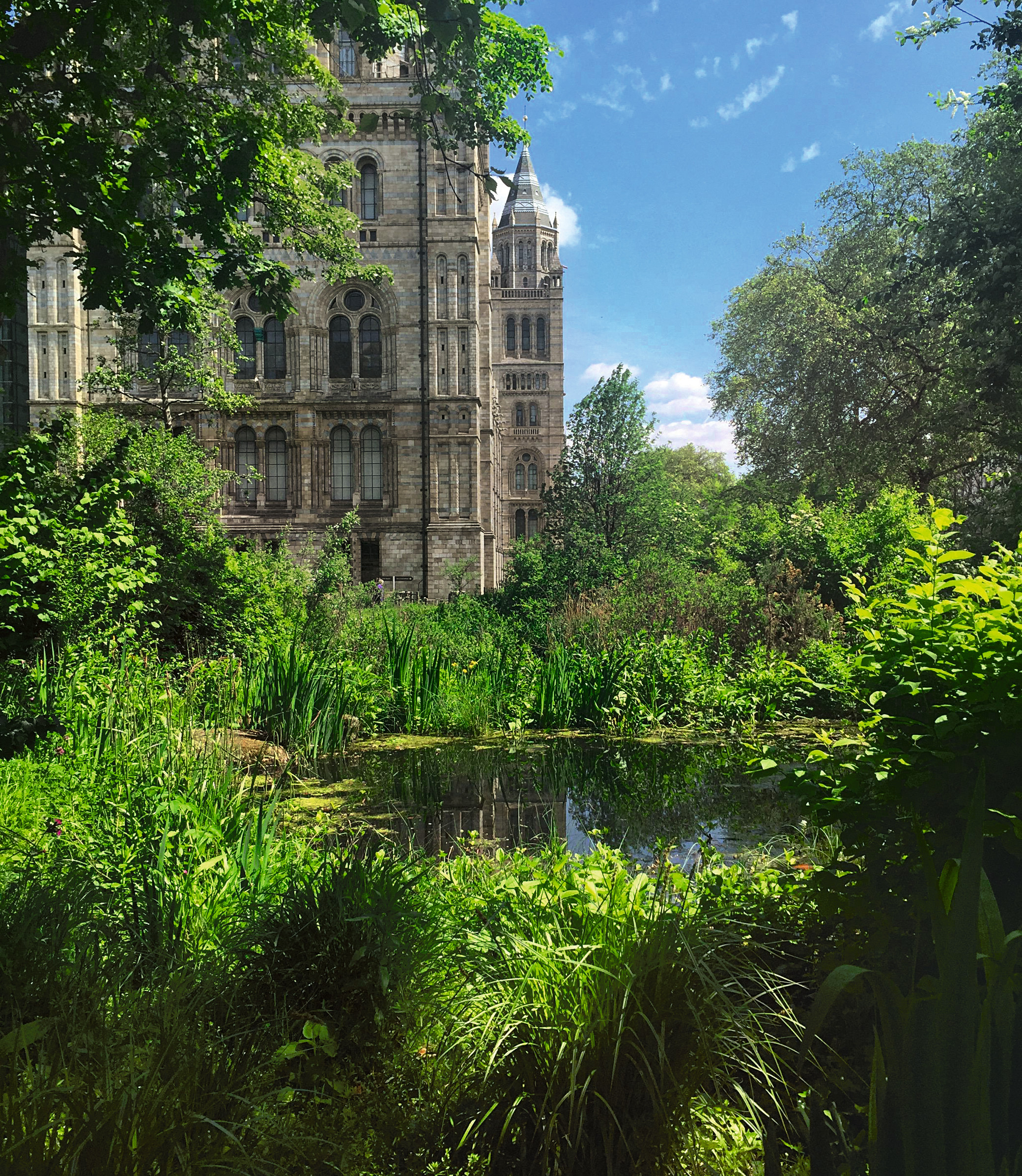 Three London gardens to cool off in this lunchtime