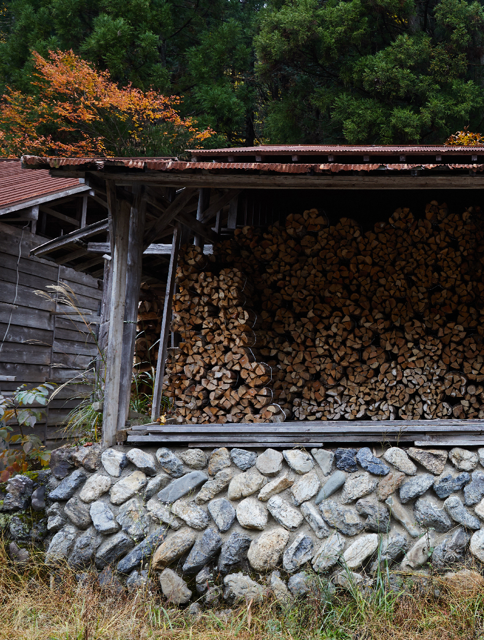 The firewood that makes monk remarkable