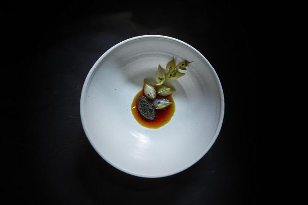 Finnish caviar and grilled onion with a broth of the charred onion skins and lemon verbena. Photograph by Gentl and Hyers