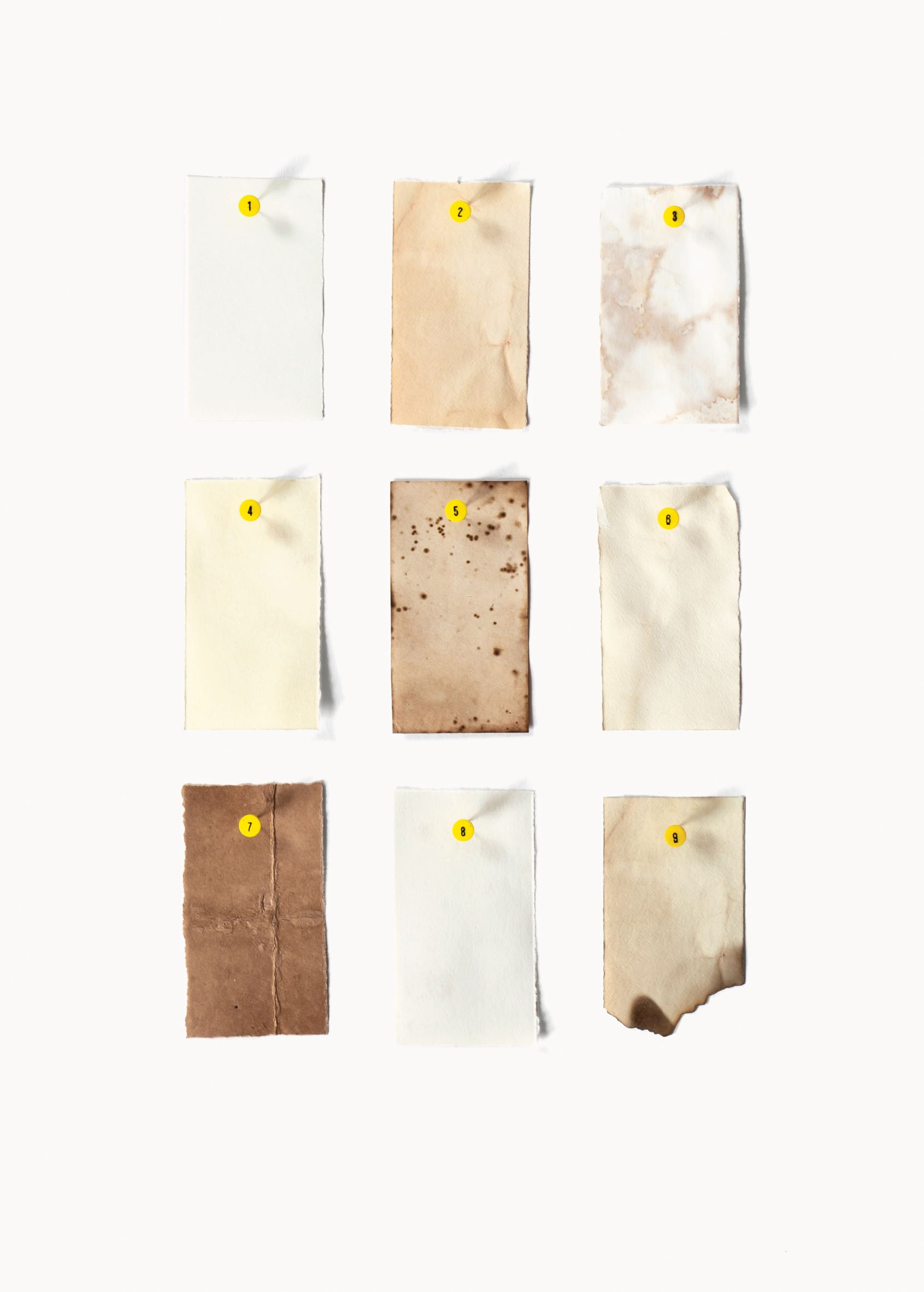 Staining and Aging Paper, photographs by Flora Fricker, collection of Annie Atkins. Left to right, top to bottom: (1) No aging (2) Tea (3) Bleach and lemon juice (4) Brasso Polish (5) Potassium permanganate crystals (6) Coffee (7) Balsamic vinegar, cooked in the oven for ten minutes (8) Red wine vinegar (9) Burnt with match