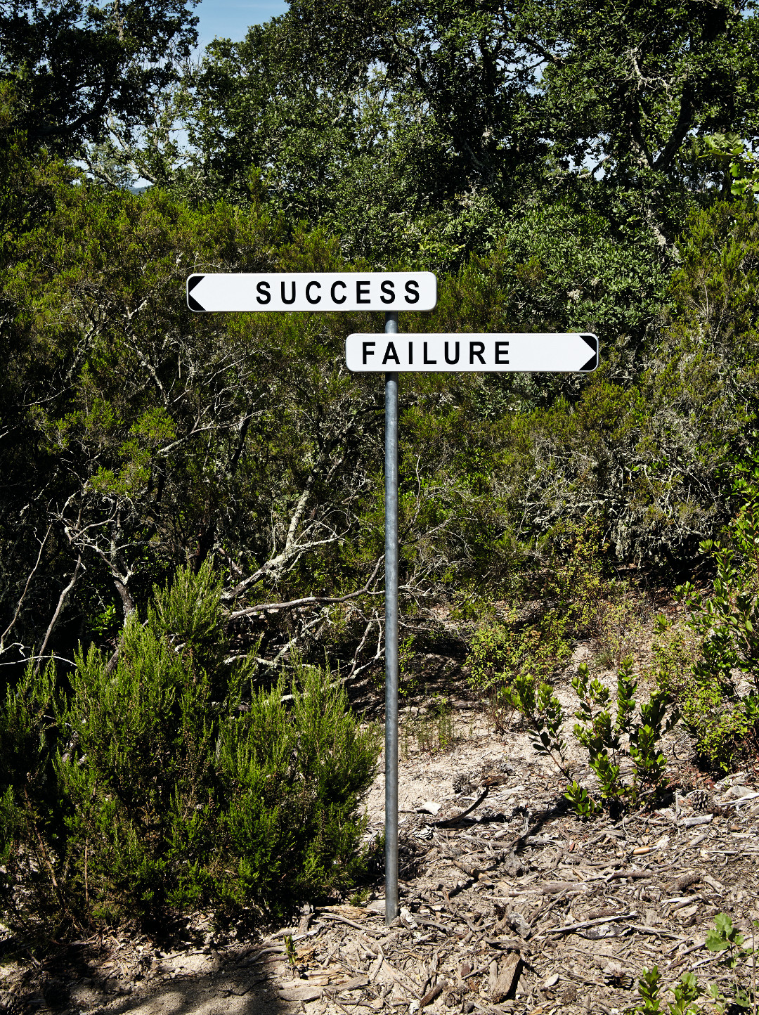 Success Failure, 2014, Domaine du Muy, France, by Gianni Motti
