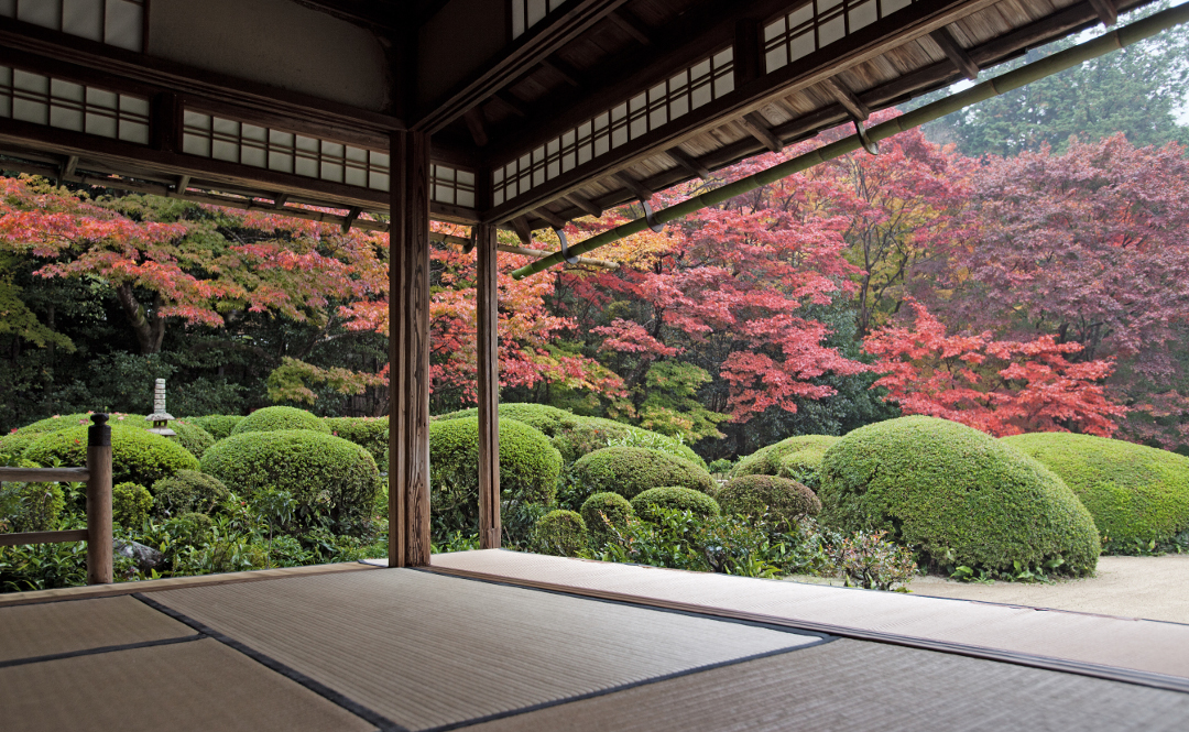 Shisen-do, Kyoto. Photo by John Lander