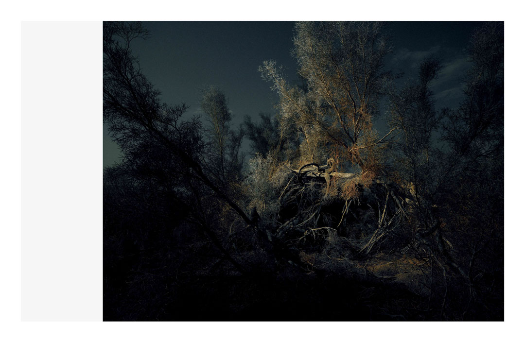 A photograph from Fabien Baron's Nocturne series, 2012