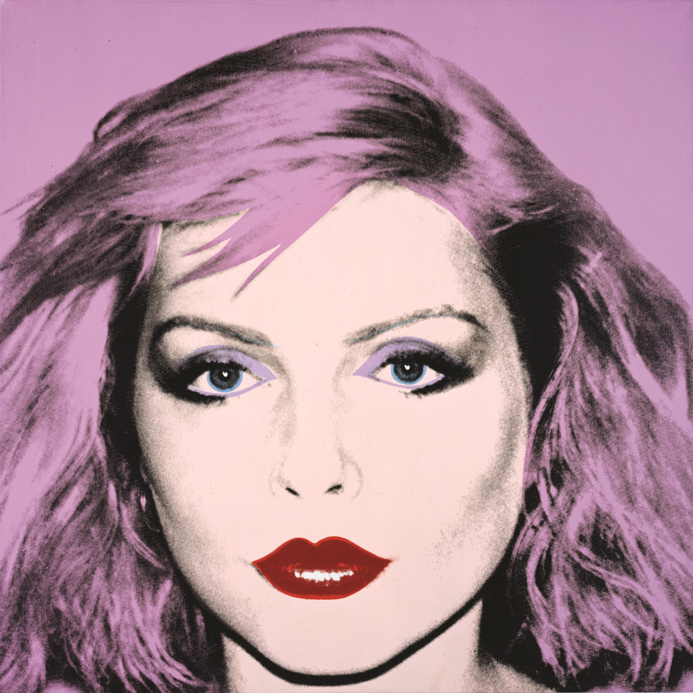 Debbie Harry (1980) by Andy Warhol. Private Collection / © The Andy Warhol Foundation for the Visual Arts, Inc. From Andy Warhol Portraits