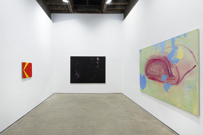 installation view, Wilhelm Sasnal at The Anton Kern Gallery, New York, 2013
