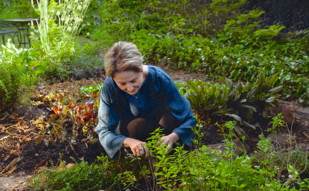 Want to garden like Alice Waters? Then put in a night shift