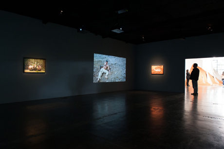 Rodrigo Braga's videos at the Sao Paulo Bienal (2012)