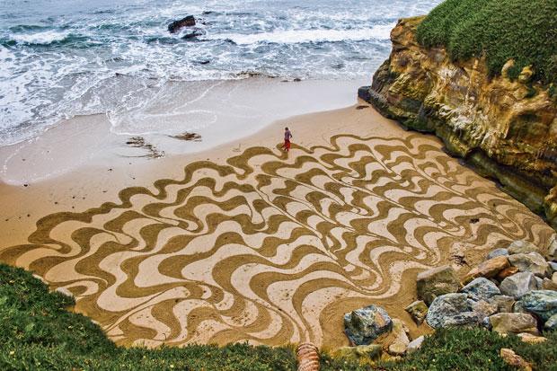 Ocean Beach - Andres Amador
