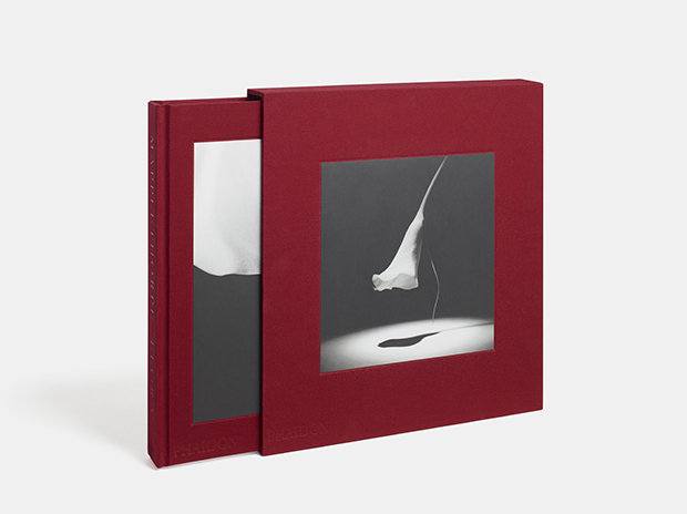 Mapplethorpe Flora: The Complete Flowers Phaidon, 2016