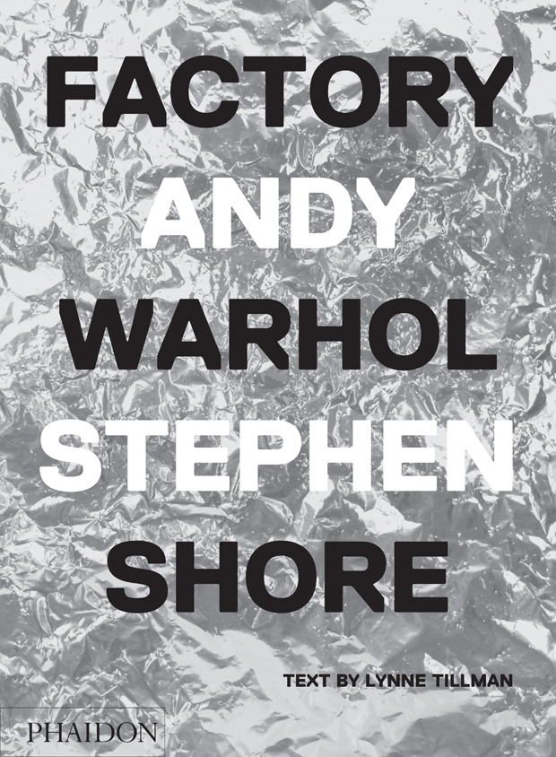 The cover of Factory Andy Warhol Stehen Shore