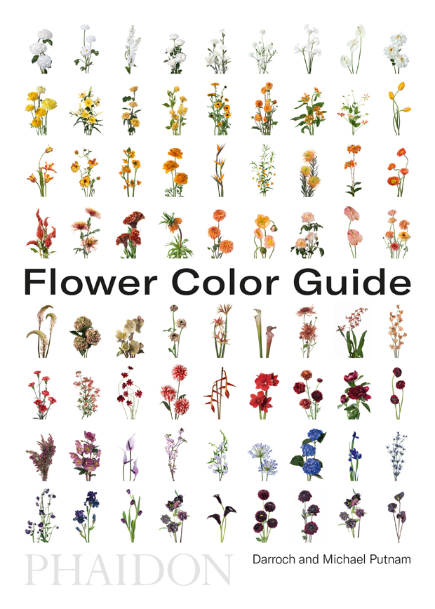 flower color guide design phaidon store