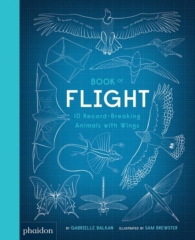 NEW: Book of Flight — Gabrielle Balkan