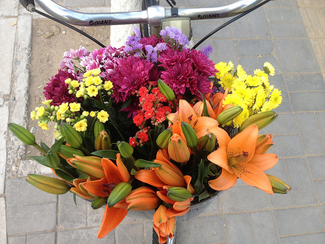 Flowers in Ai's bicycle basket