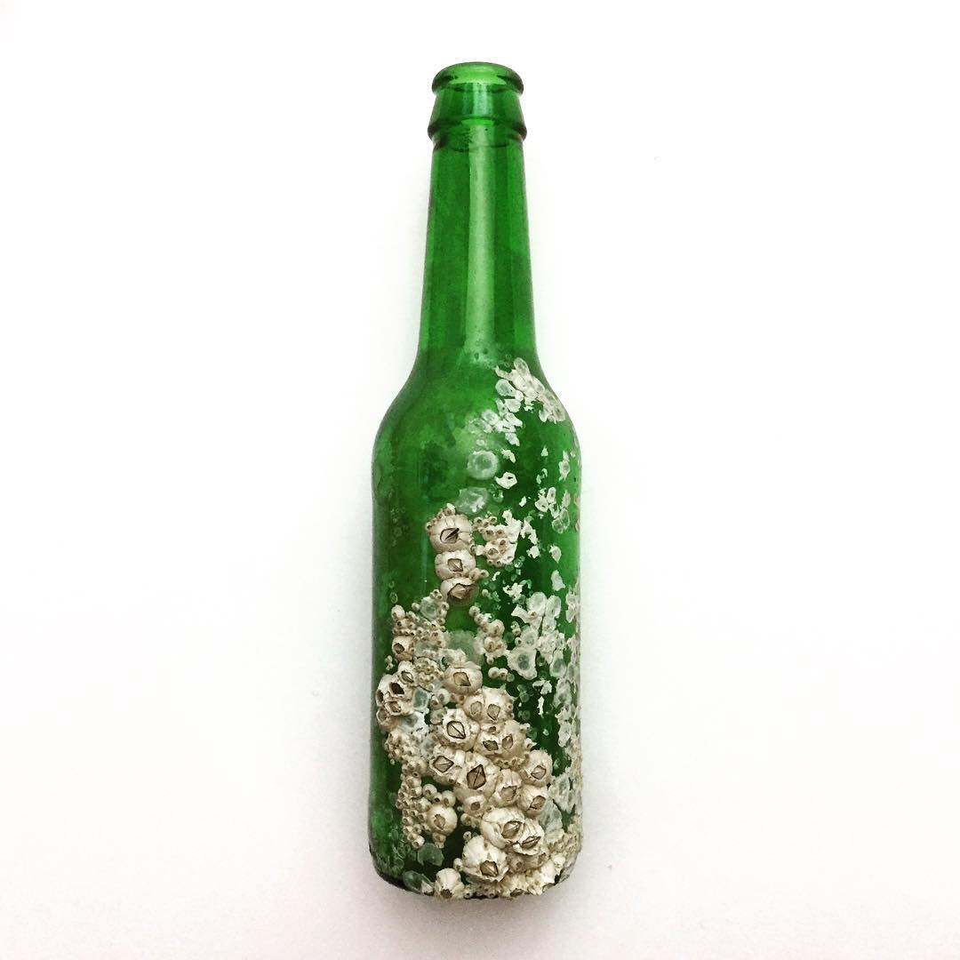 Doro Ottermann's barnacled beer bottle submission (courtesy of @dorobot)
