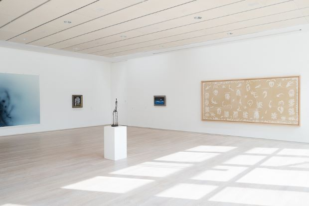 Tillmans Freischwimmer image beside works by Picasso, Matisse and Max Earnst. Photograph by Wolfgang Tillmans.