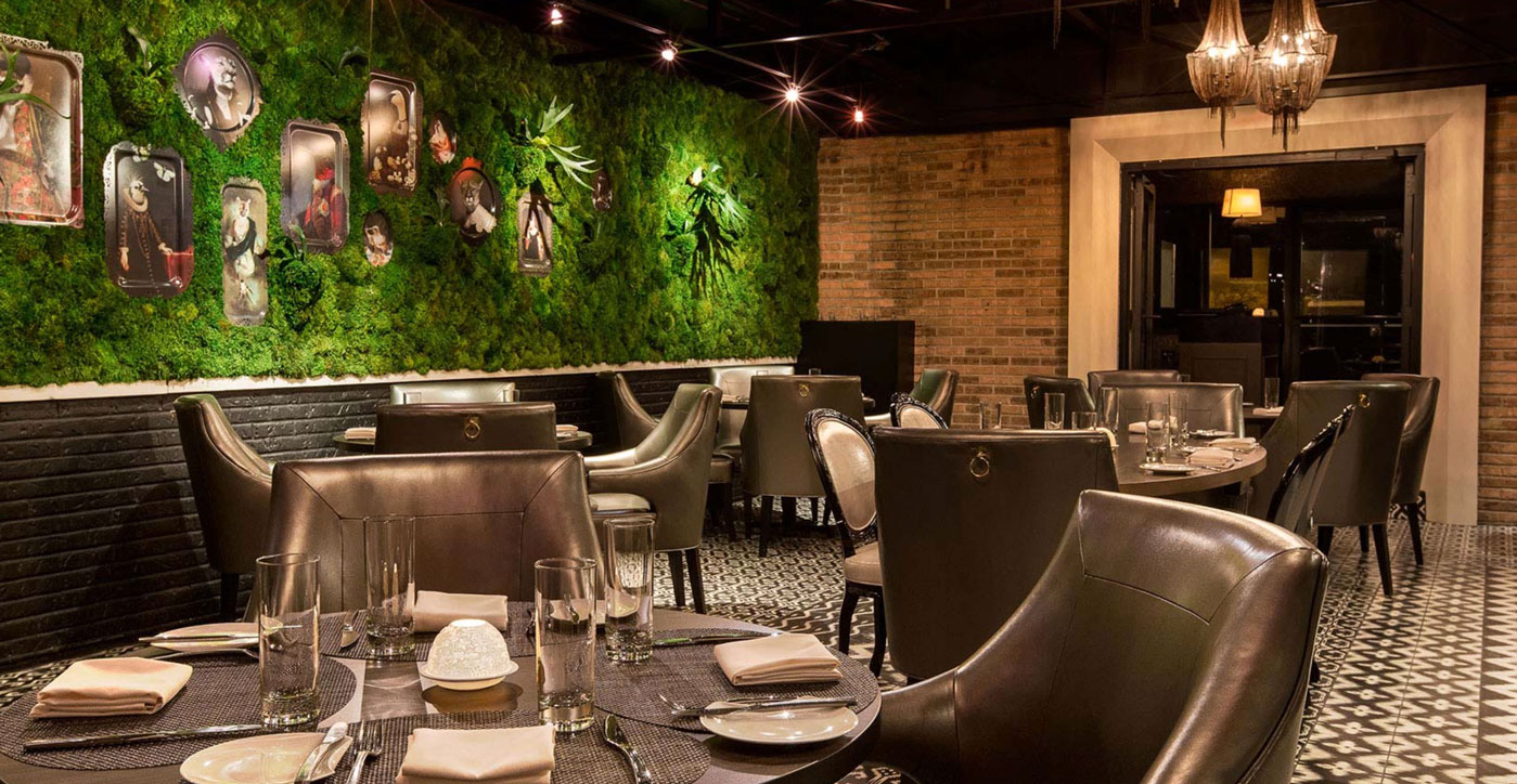 Boka - Where Chefs Eat in Chicago when they want a backdrop of North Carolina moss and living staghorn ferns