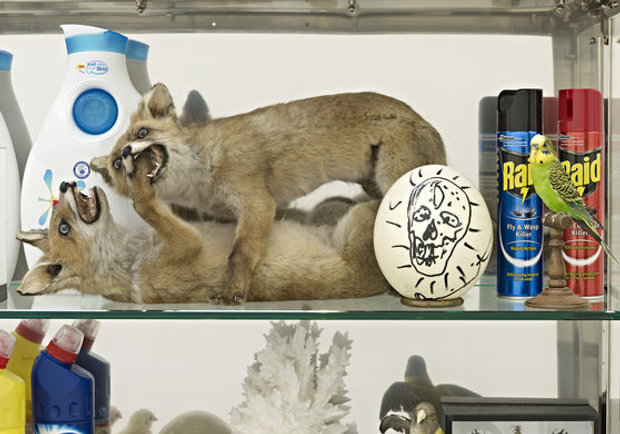 What has Damien Hirst put in his new cabinet?