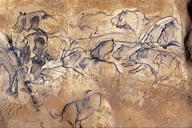Lion pictures in the Chauvet Cave, from Cave Art