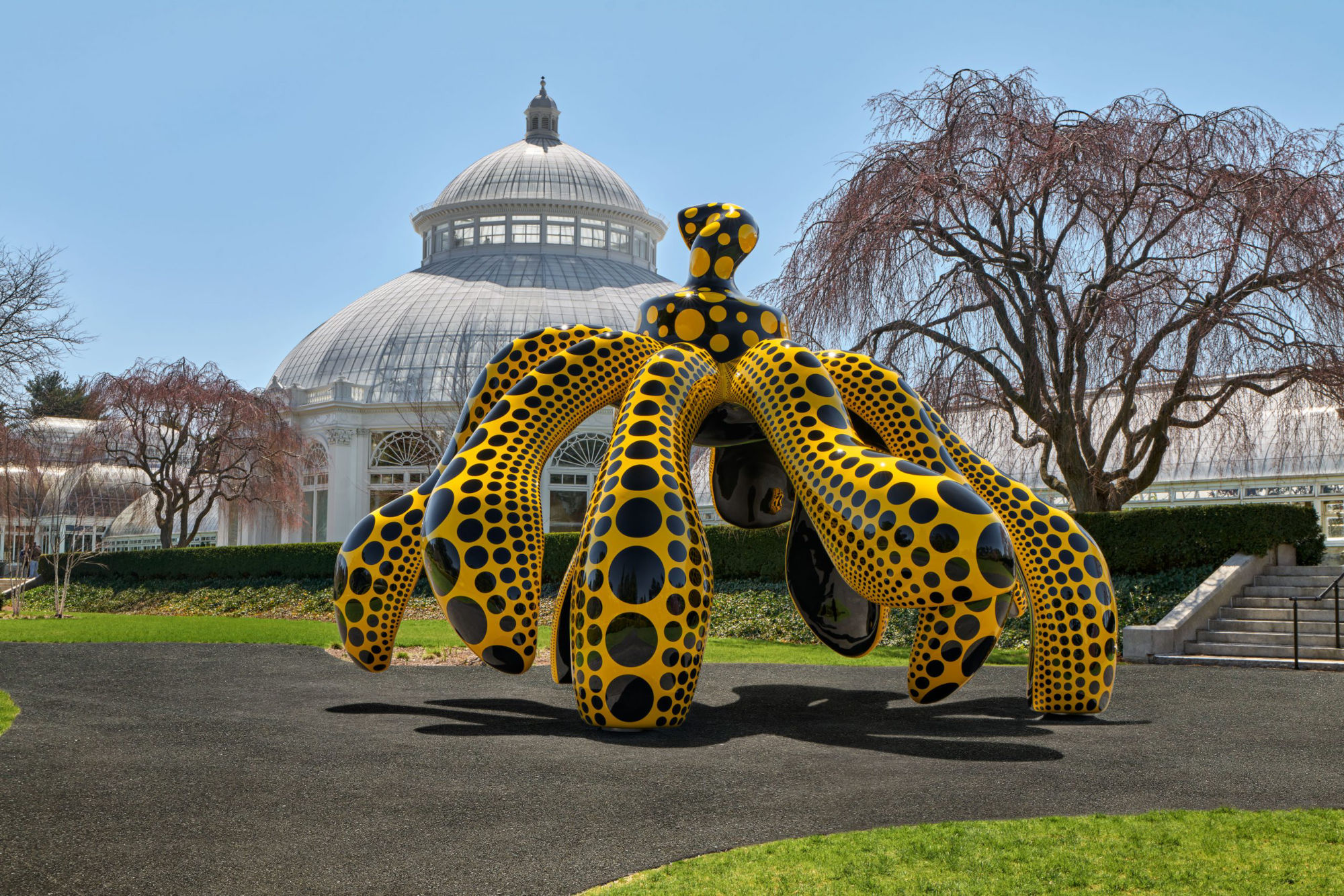 Yayoi Kusama's new show bursts into life at The New York Botanical Garden