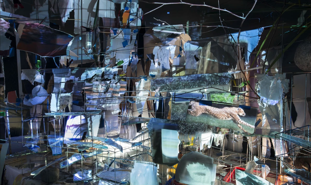 High-speed photo pioneers inspire Sarah Sze's new show