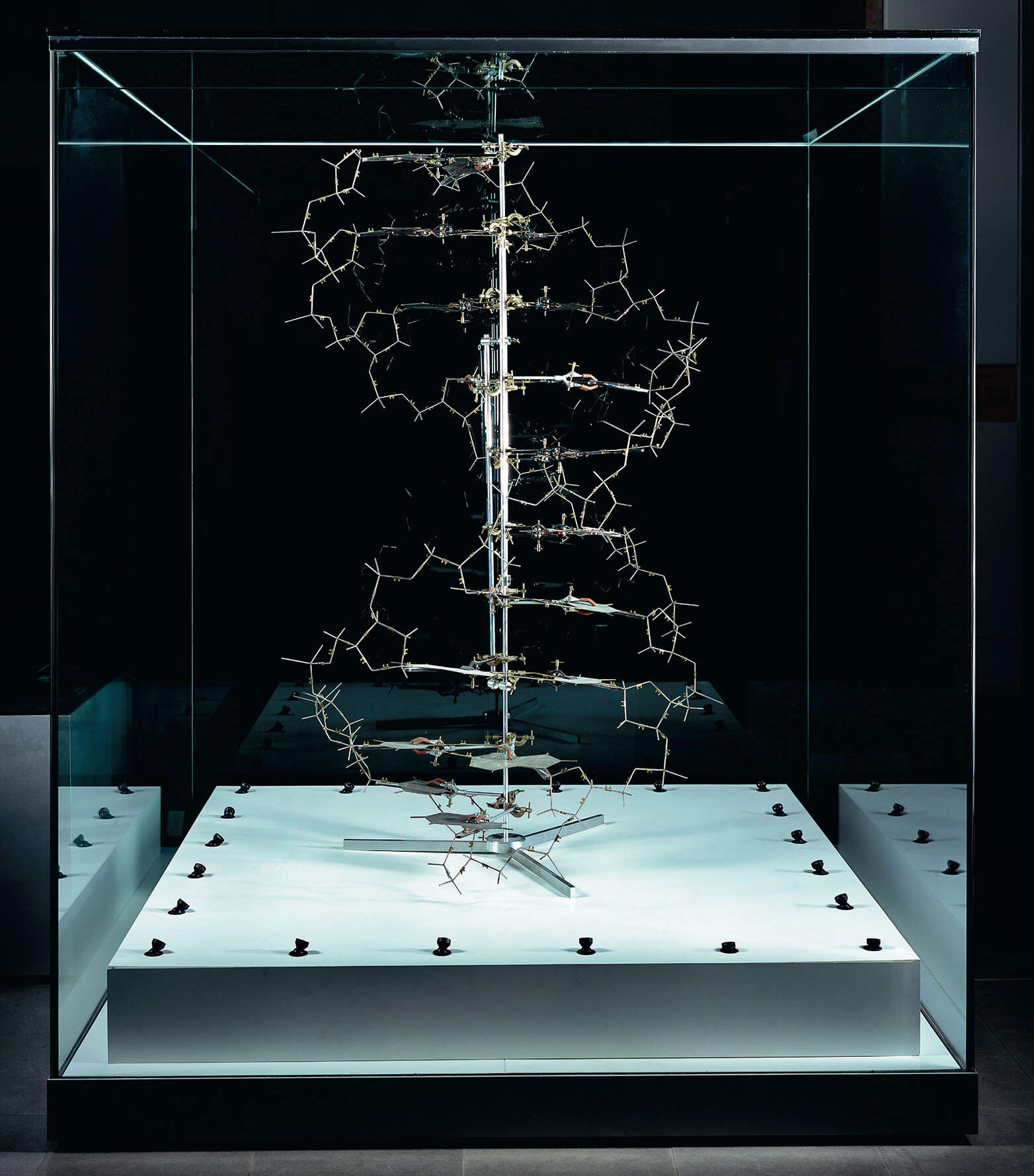 The original model created by James Watson and Francis Crick illustrates the double-helix structure of DNA. Photographed by Robert Clark, as featured in Evolution: A Visual Record