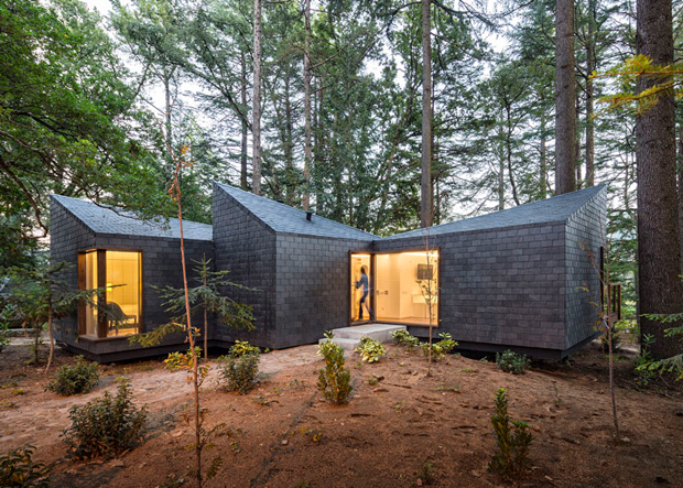 Portugal S Eco Friendly Forest Resort Architecture