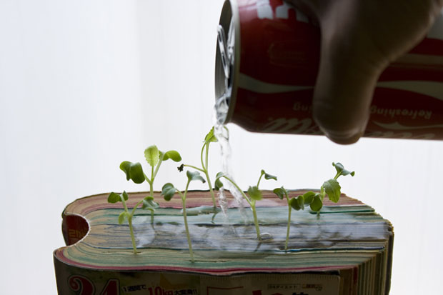 How to grow plants from your old comics