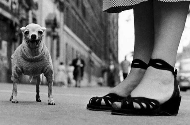 New York City, 1946 by Elliott Erwitt