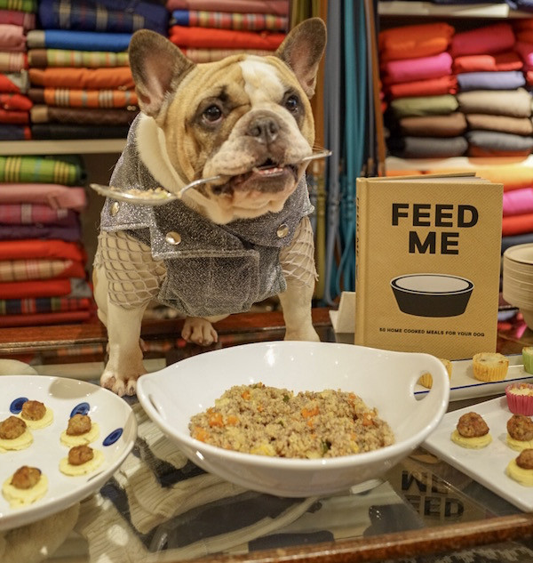 A very happy Cruz the Frenchie at our Feed Me launch, held earlier this week at Canine Styles, New York City