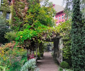 Three New York City gardens to cool off in this lunchtime