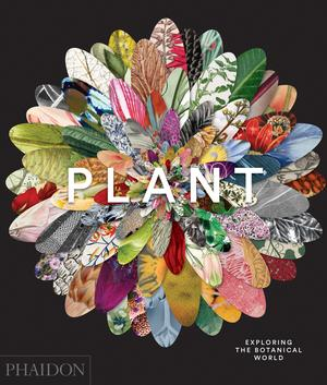 Plant: Exploring the Botanical World (Gift Boxed)