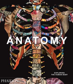 Anatomy: Exploring the Human Body (Pre-order)