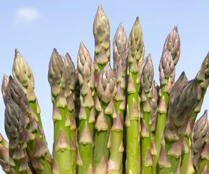 Become a seasoned eater and enjoy the best of British asparagus