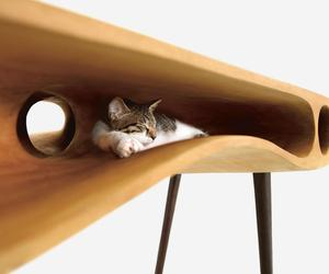 These cat homes will make your home look good too