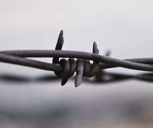 The Kansas Barbed Wire Museum