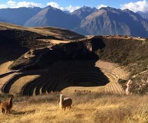 Virgilio Martinez is building a restaurant beside this Inca ruin