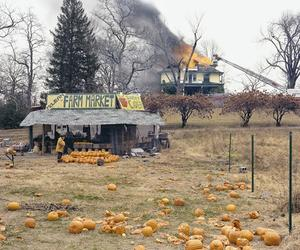 What do Joel Sternfeld's photos say about America?
