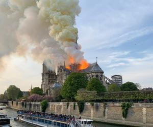 What the Notre Dame fire taught our author about stone