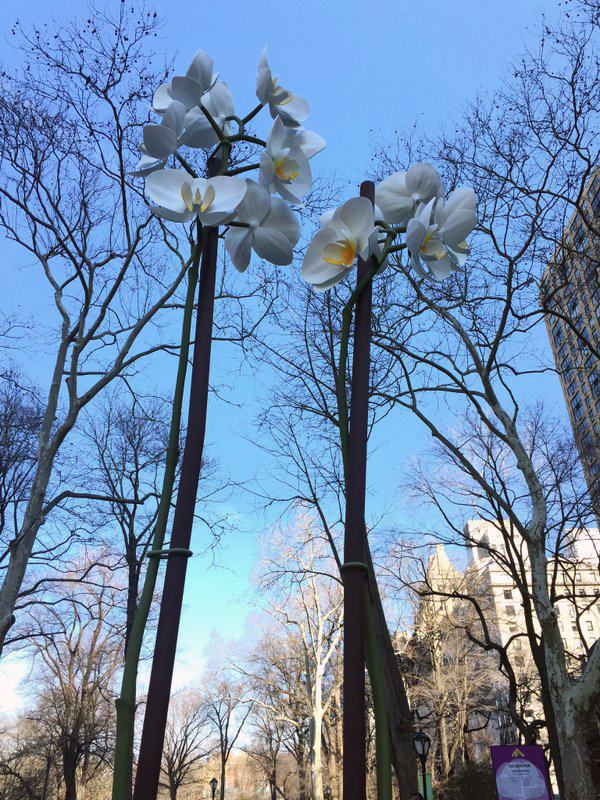 Two Orchids (2016) by Isa Genzken. Image courtesy of Central Park Conservancy