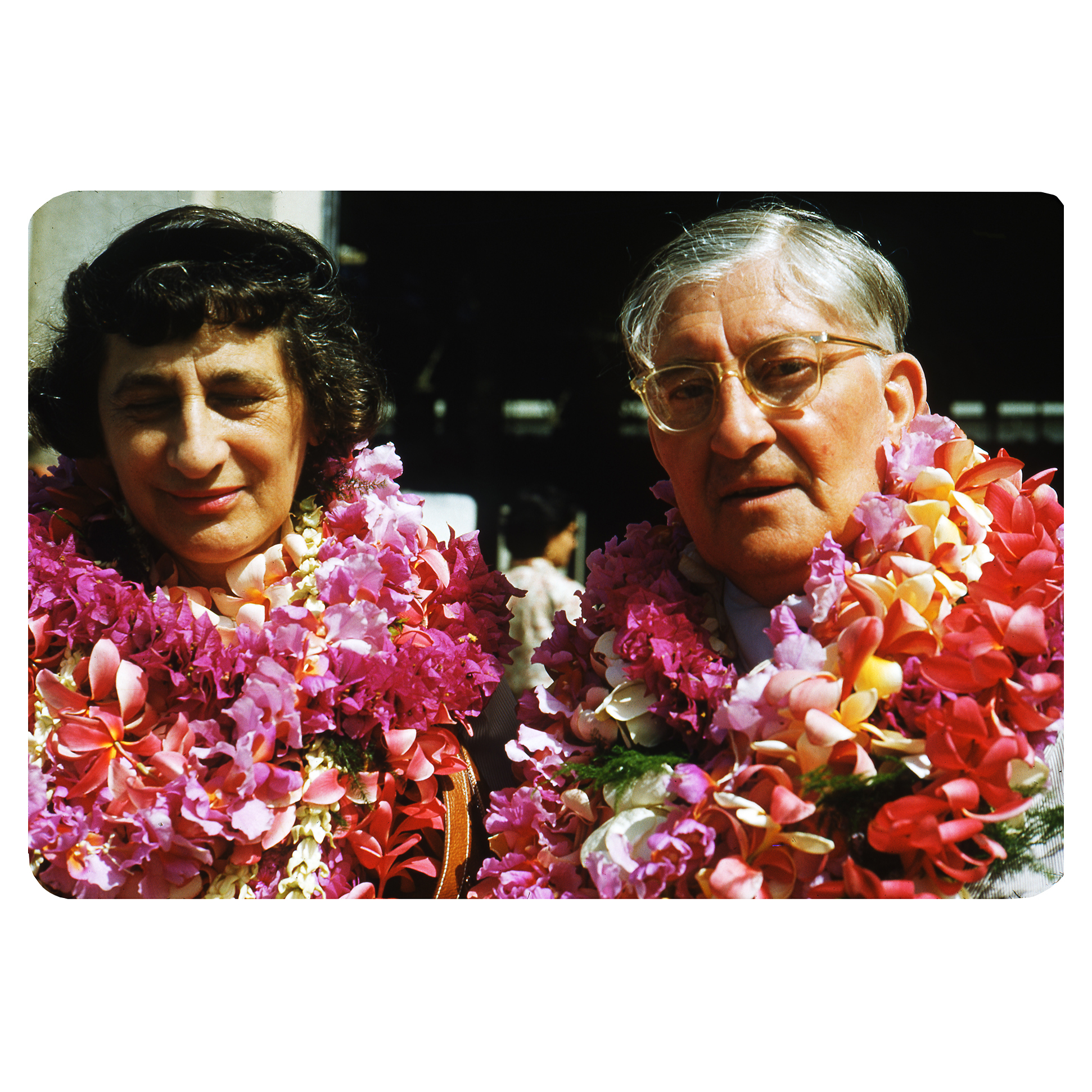 Josef Albers, Photographs of Hawaii, 1954. © 2020 The Josef and Anni Albers Foundation/ARS, NY/DACS.