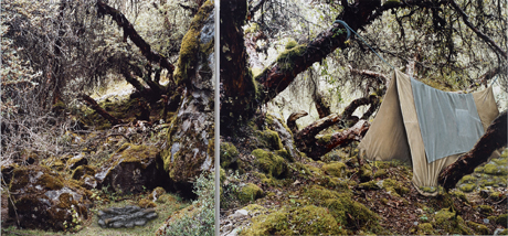 Alex Hartley, I'm tired of travelling (2011), Diptych, constructed mixed media on C-type photograph