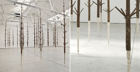 Alistair Mackie, Copse, 2011 pine trees dimensions variable, image courtesy All Visual Artists, photography Tessa Angus