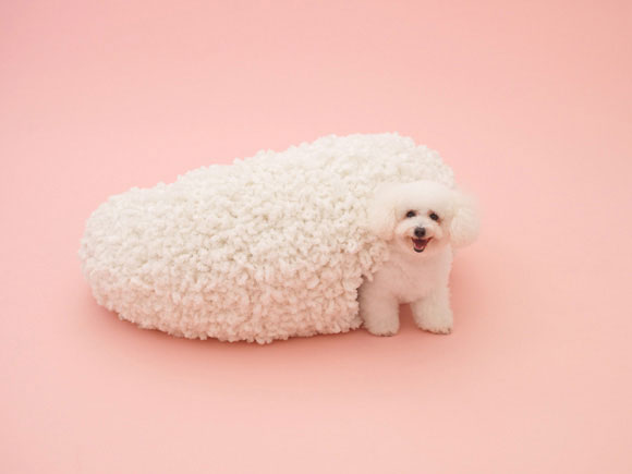 Architecture for the Bichon Frise by Kazuyo Sejima