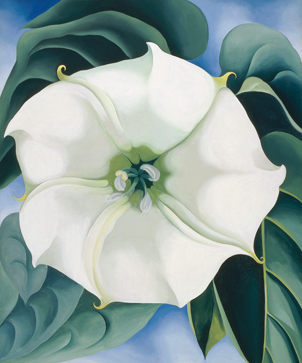 What do you see in Georgia O'Keeffe's flowers? | Art | Agenda ...