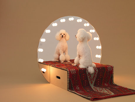 Paramount for poodles, by Konstantin Grcic