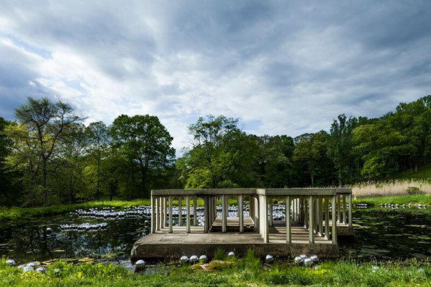 Yayoi Kusama's Narcissus Garden installed at the Glass House. Photograph by Matthew Placek
