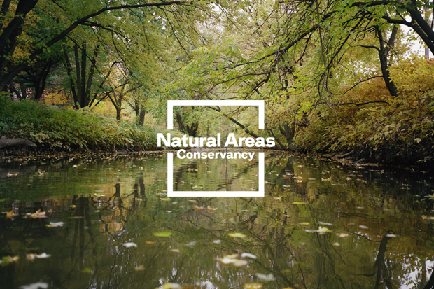 Pentagram's new identity for the Natural Areas Conservancy uses photography by Joel Meyerowitz